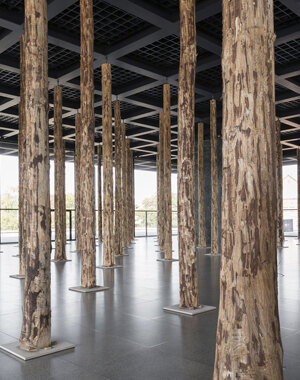 David Chipperfield, Neue Nationalgalerie, Foto: David von Becker