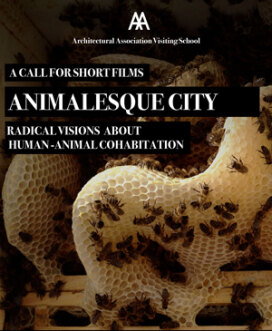 Animalesque City